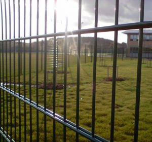 Twin wire weldmesh fence