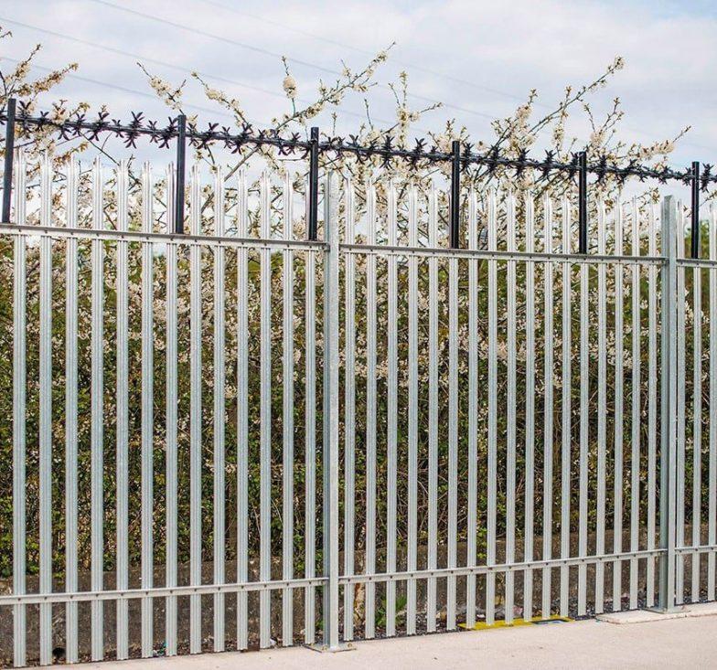 CACTI on palisade fence