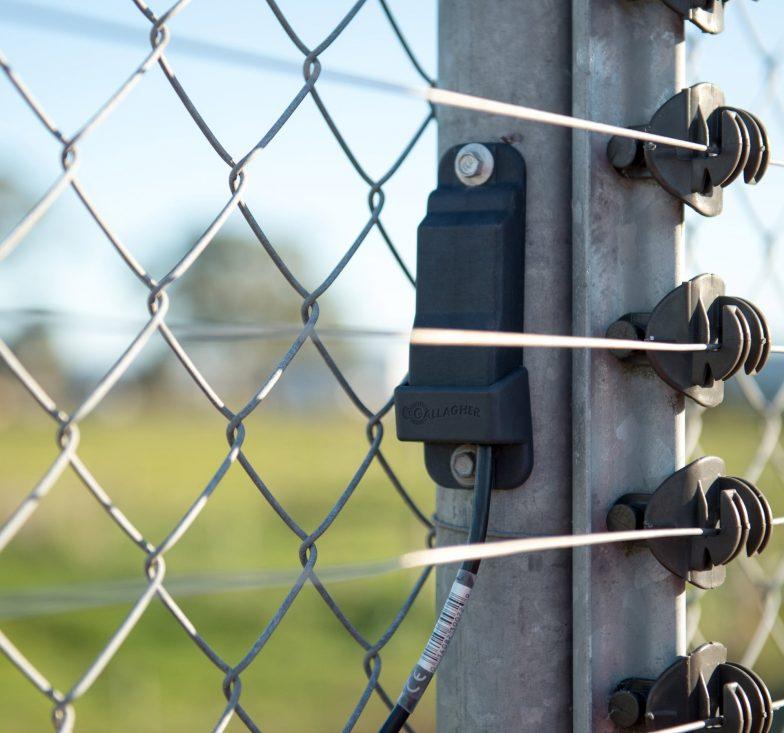 z20 on fence